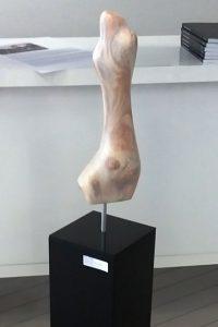 Korpus, 50x20x20 cm
