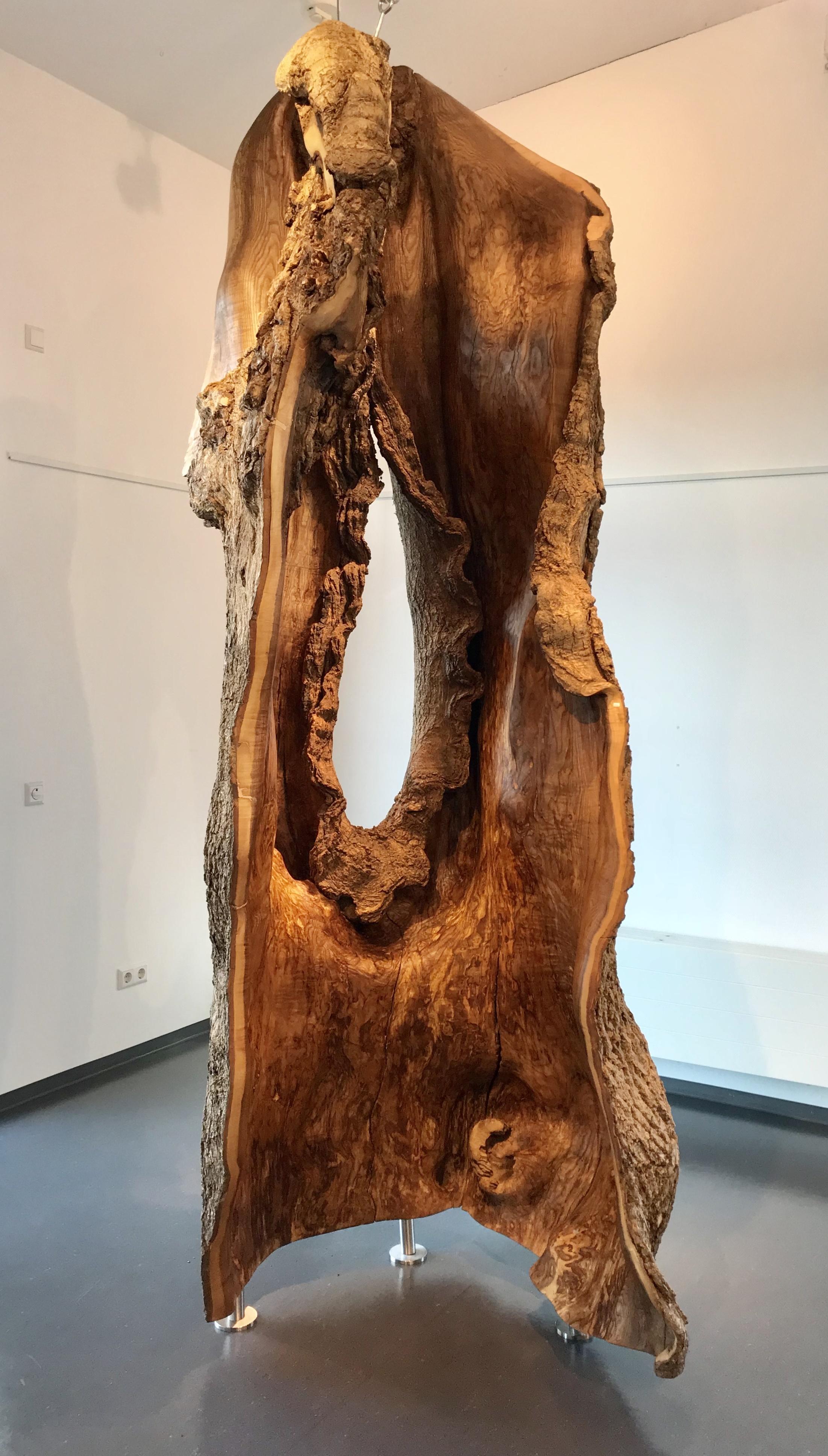 Baumskulpturen Petergebhard